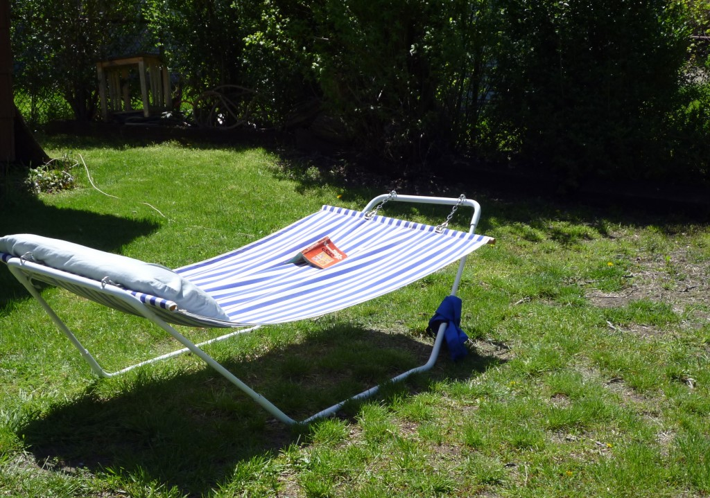 Backyard Hammock Design Backyard Hammock Swing