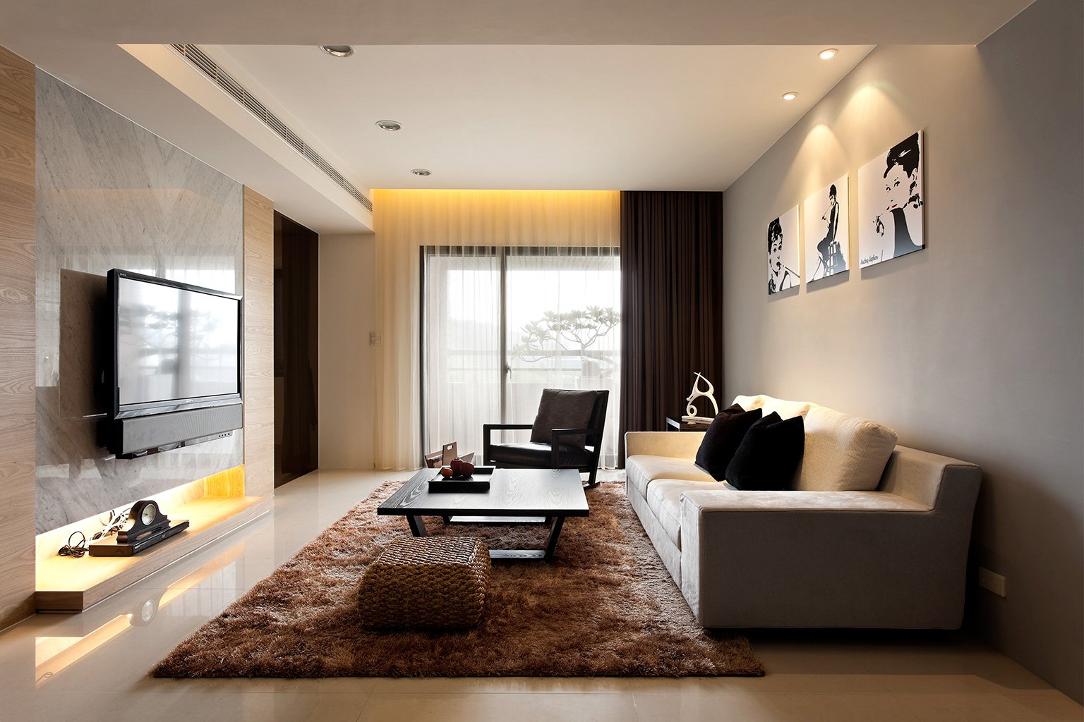 Modern living room design ideas - Modern Living Room With Beautiful Rug