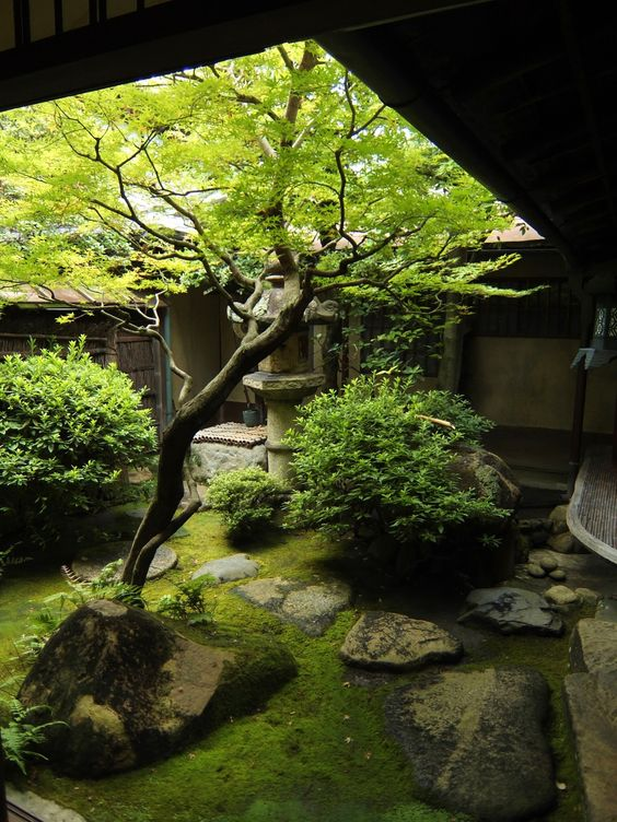 25 serene indoor zen garden for meditation for Japanese meditation garden
