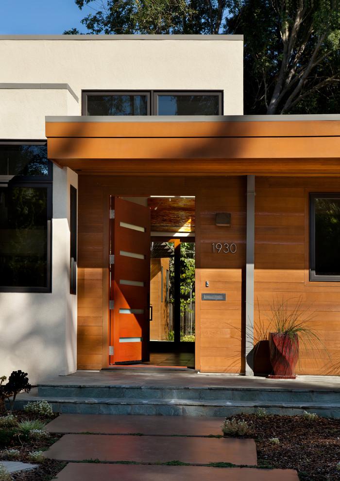 Mid Century Modern Entry Doors