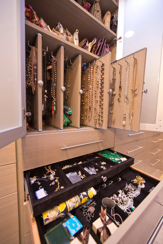 Amazing Modern Walk In Closet Jewelry Storage Ideas Closet Modern With Amazing Walk In Closet