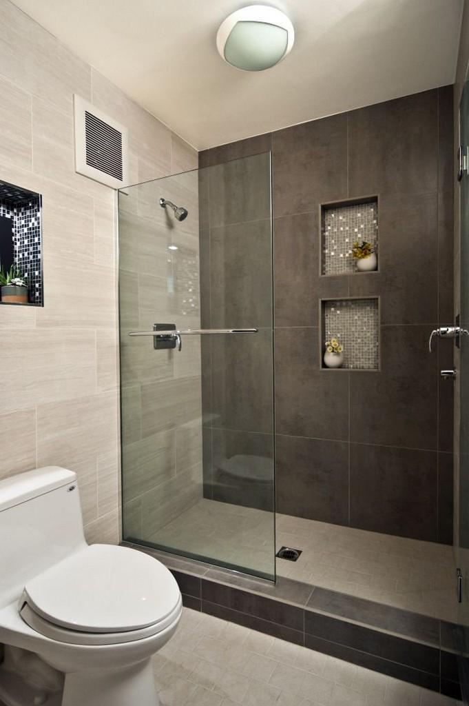 Small-Bathroom-Ideas-with-Walk-in-Shower