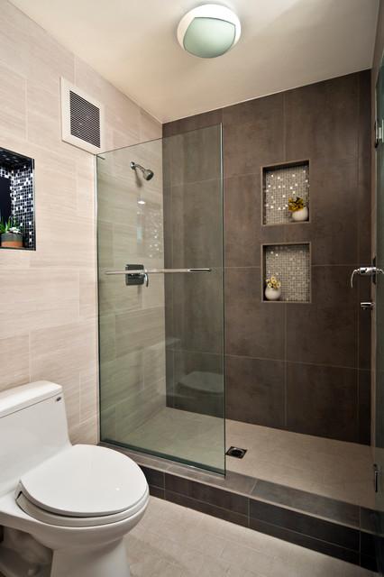 Modern Frameless Bathroom Shower