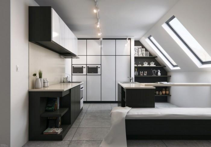Attic Black and White Kitchen Design
