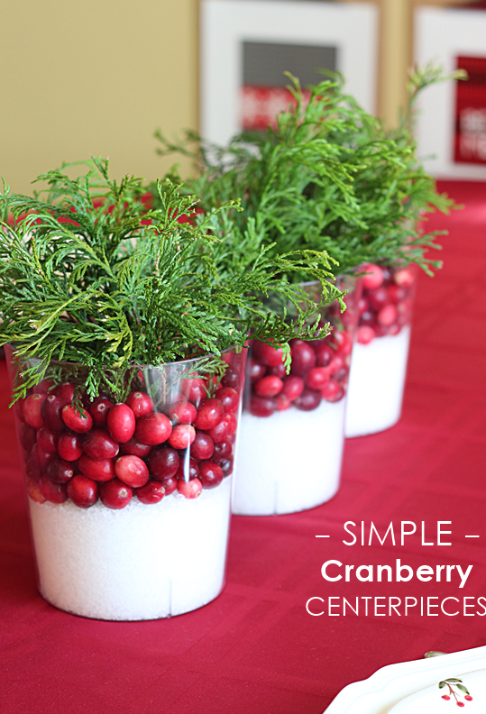 Simple Cranberry Centerpiece