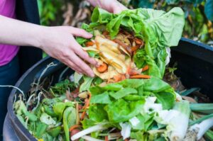 How Cutting Down Your Food Waste Can Help You Lose Weight
