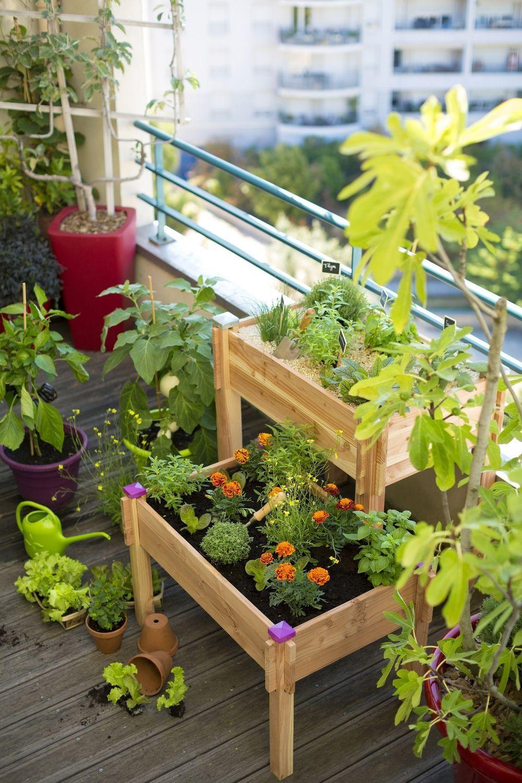 02 - Vegetable garden on feet for children