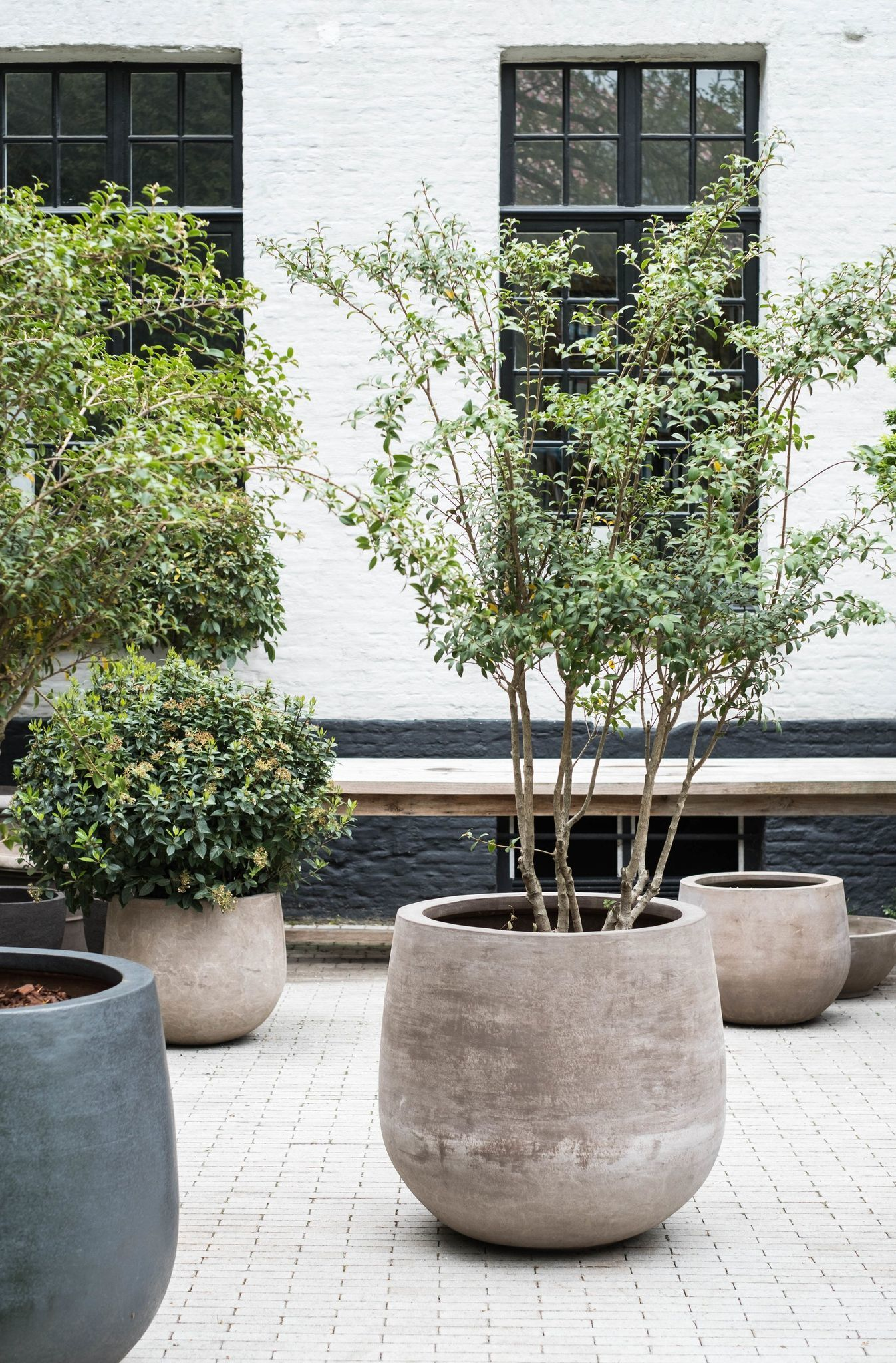 14 -Oversized pots bring character to the outdoor space
