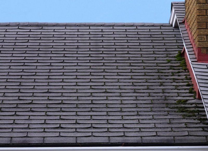 Replacing Your Roof2
