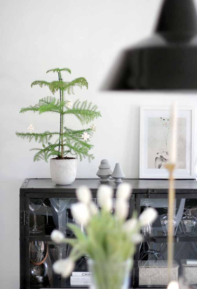 04. Those who don't have a traditional Christmas tree, transform a beautiful vase with plants