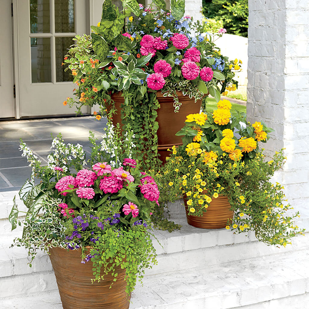 6. Decorate the area with flowerpots