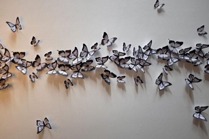 Butterflies on wall