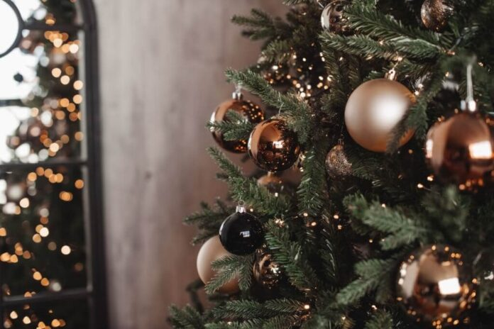 Christmas Tree To Last Long