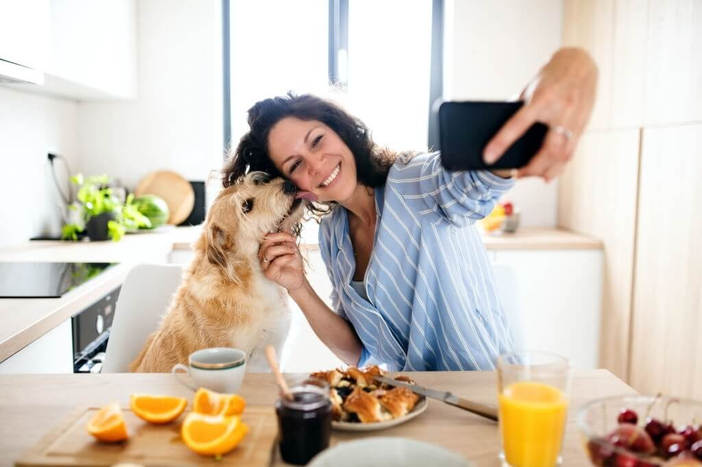 Things You Should Know About Pets In Leased Apartments