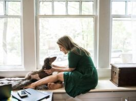 Pets In Leased Apartments