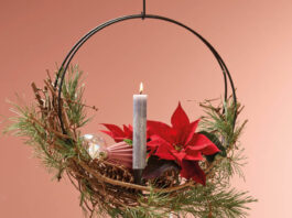 Suspended Frame With Poinsettia