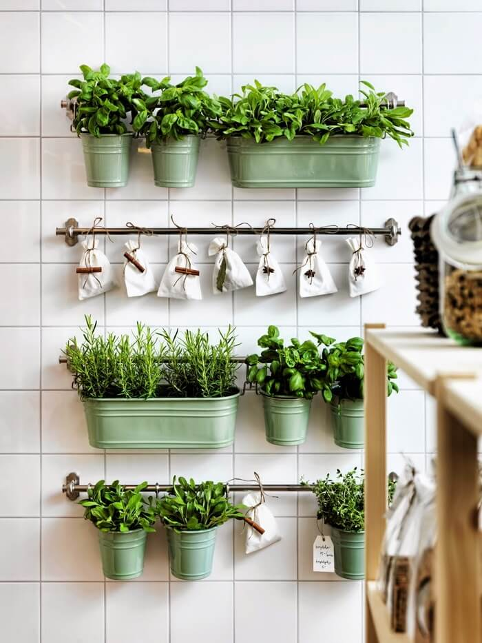 15 Herb-growing Ideas For The Kitchen