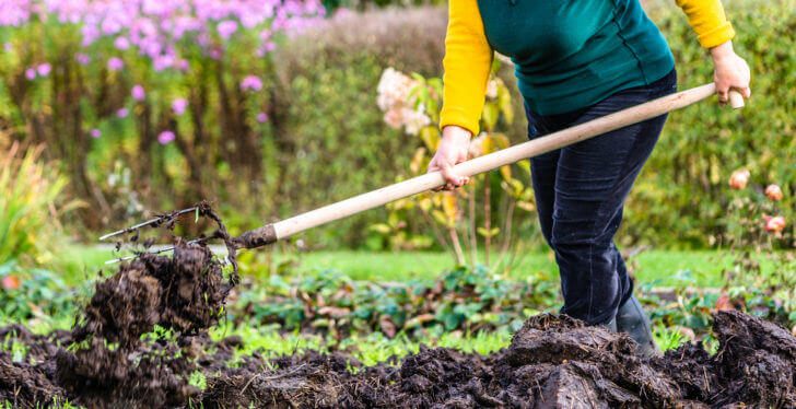 5 Gardening Tools You Must Have