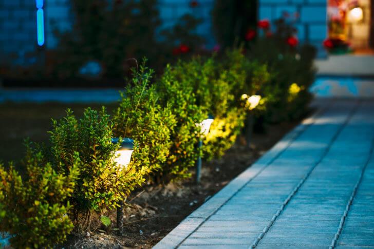 5 Energy-saving Tips For The Garden